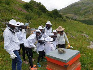 Ateliers sur l'apiculture Les Menuires